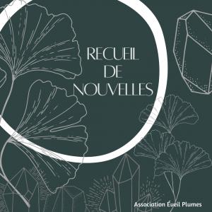 Read more about the article Recueil de nouvelles – L'éveil plumes